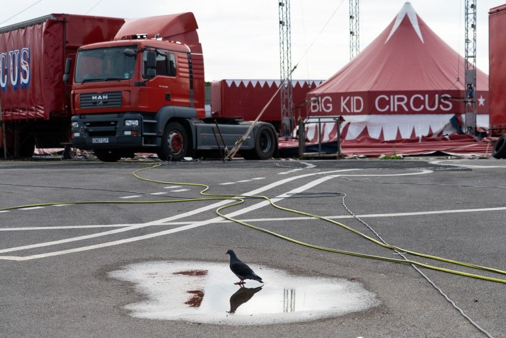 One of Julie Pinnington Wright's images of the Big Kid Circus